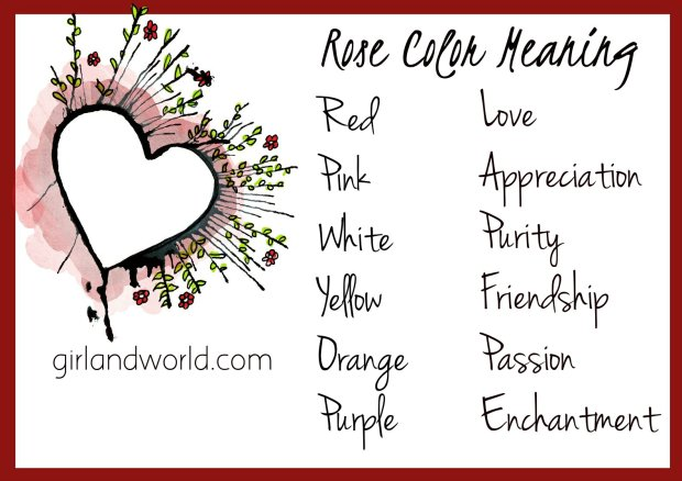 Rose Day 2017 idea, schedule, meaning of rose colour