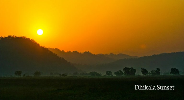 Jim Corbett national park India largest tiger reserve Dhikala forest zone Dhangri gate how to rech Jim corbett best time to visit JIm Corbett Jim COrbett Attractions Tiger sightings  animals wildlife photography