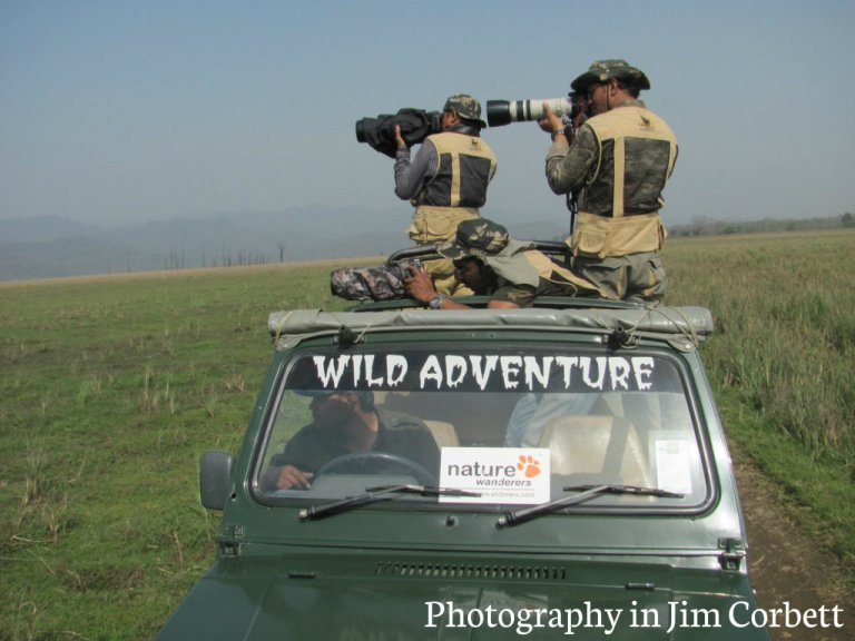Jim Corbett national park India largest tiger reserve Dhikala forest zone Dhangri gate how to rech Jim corbett best time to visit JIm Corbett Jim COrbett Attractions Tiger sightings  animals wildlife photography flora fauna birds at Jim corbet natural park jim corbett hotels best resorts lodge at Jim Corbett