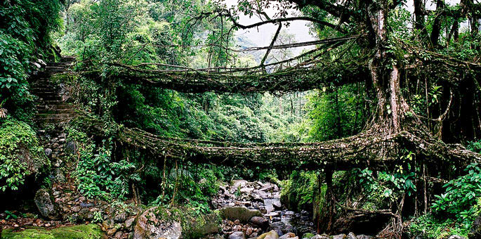 meghalaya, shillong,north-east, things to do place to visit where to stay in shillong cherapunji, shopping india eating restaurant tourist travel hotel adventure travel
